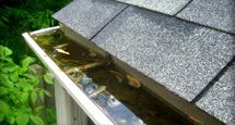 Eavestrough clogged with debris